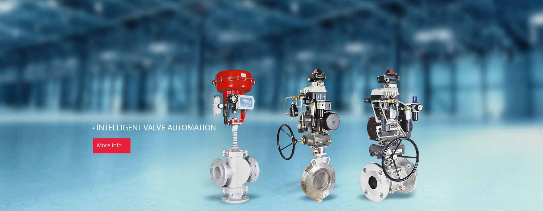 Automation Valve manufacturer